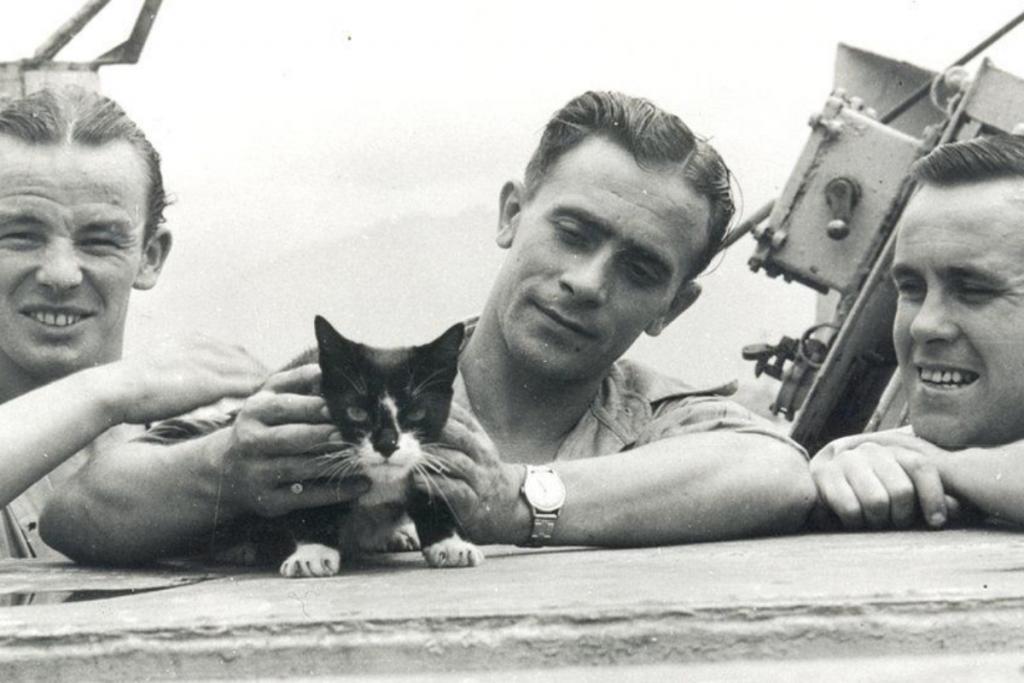 Simon-el gato smoking
